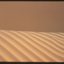 Imperial Sand Dunes (2)